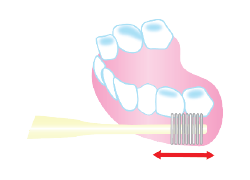 Just polishing your teeth just like polishing your teeth will give you enough massage effect.