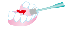 Tooth back: Please stand up the brush so that it follows the back side of the leaves, brush up and down.